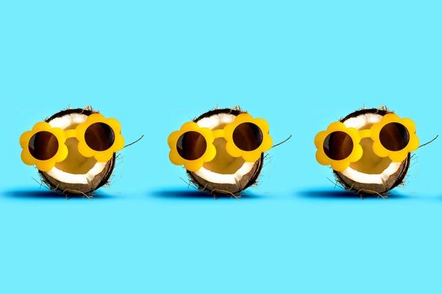 hunde-und-kokosoelIa9NShHSv5sQo